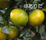 10.12_2.jpg