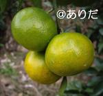 10.12_3.jpg