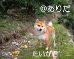 10.12_5.jpg