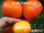4104fbb1.jpg