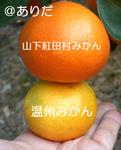 84c5bc32.jpg