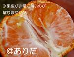 IMGP0954.jpg
