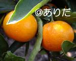 aba7b660.jpg