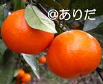 b1b4ddd3.jpg